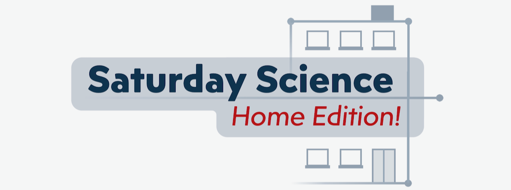Saturday science home edition